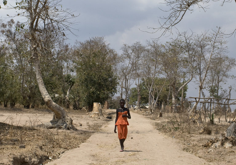 A woman far in the distance walking on a dusty road in Malawi. Trees are dotted around in the dry landscape.